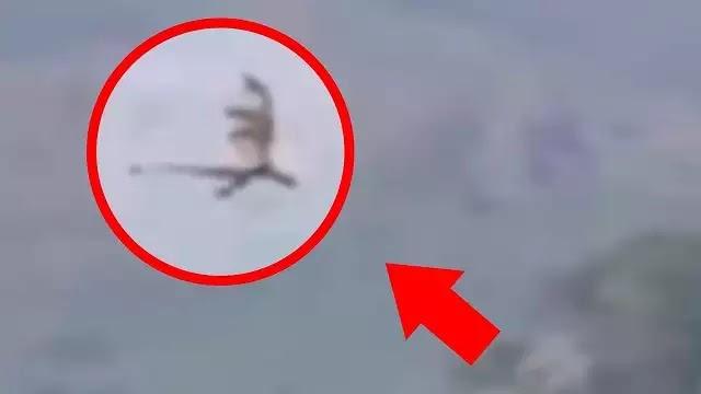 Μυστηριώδες πλάσμα «δράκος»  η φτερωτός δεινόσαυρος μιας άλλης εποχής πετάει στα βουνά της Κίνας? video!