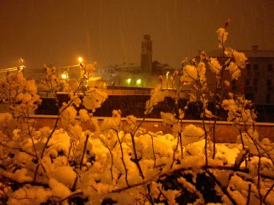 neve a vicenza 2013