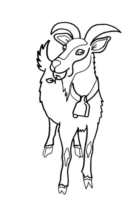 صورة ذكر الماعز يعلق في رقبته الجرس لتلوين الصغار