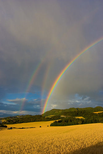 clear triple rainbow