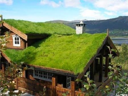 Techos Verdes, Opciones Sostenibles para la Construccion