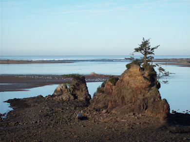 Siletz Bay, Lincoln City, Or.