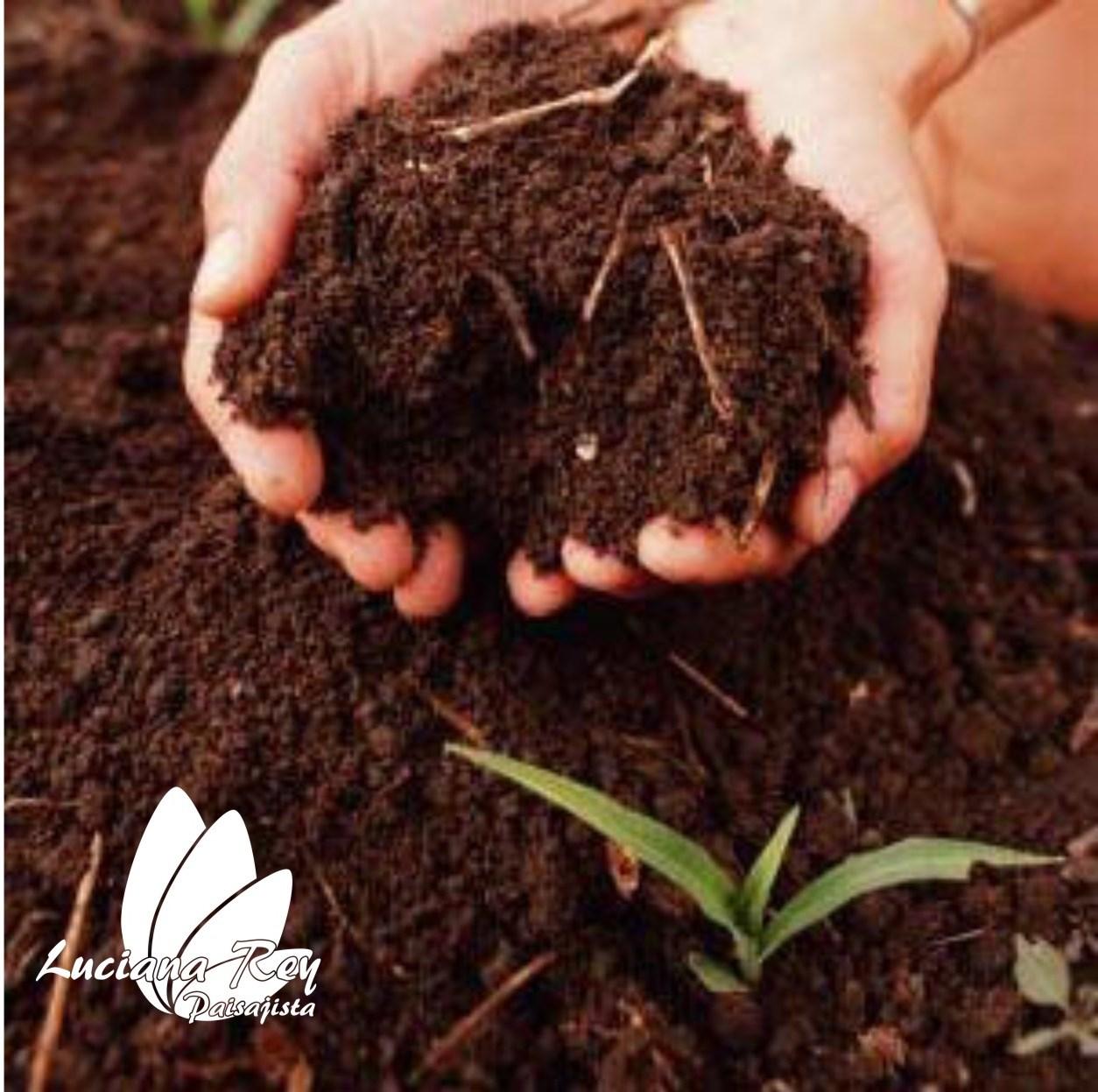 Viv tu jard n mayo 2013 - Preparacion de la tierra para sembrar ...