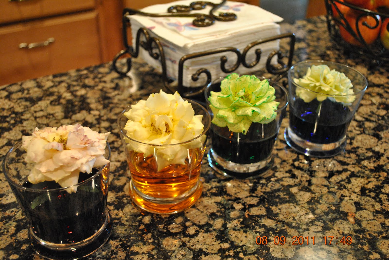 Dawson daze snowglobes water with food color flowers for Food coloring roses