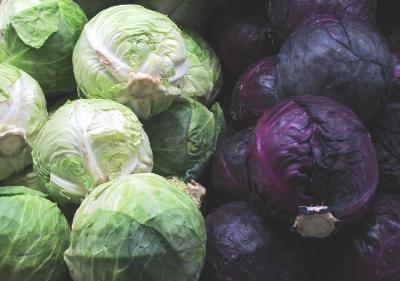 Repollo - Contra La Gastritis y La Ulcera