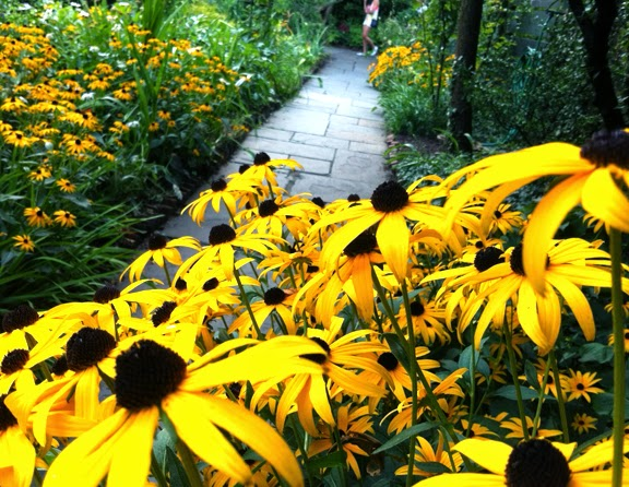 New York City's Secret Garden / St. Luke's