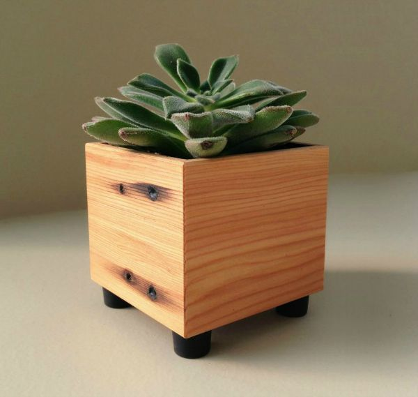 Andrew 39 s reclaimed for Wooden cactus planter