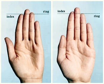 Penis Size link to Ratio of Index and Ring fingers