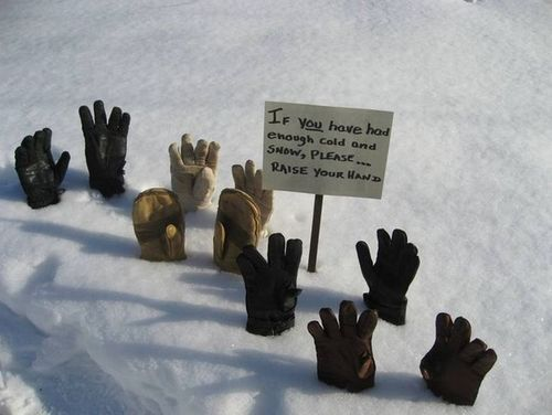 If You Have Had Enough Cold And Snow, Please Raise Your Hand