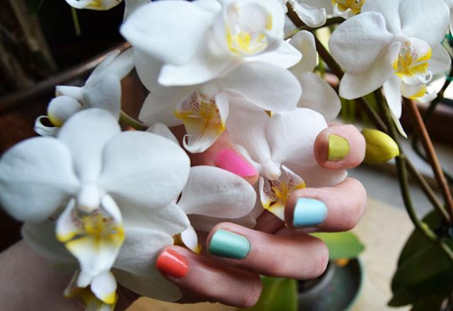 manicure,pastel nails,nails,rainbow nails,rainbow manicure,nails diy,diy, my diy