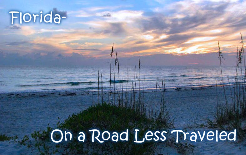 Florida - On a Road Less Traveled