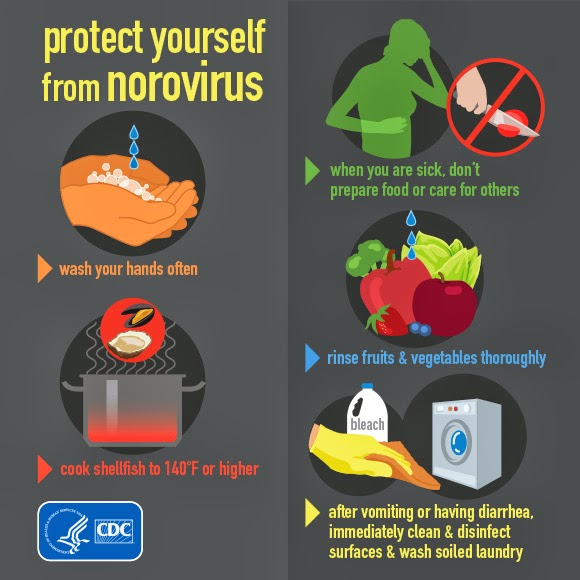 Few Simple Measures To Prevent Norovirus 2014 Stomach