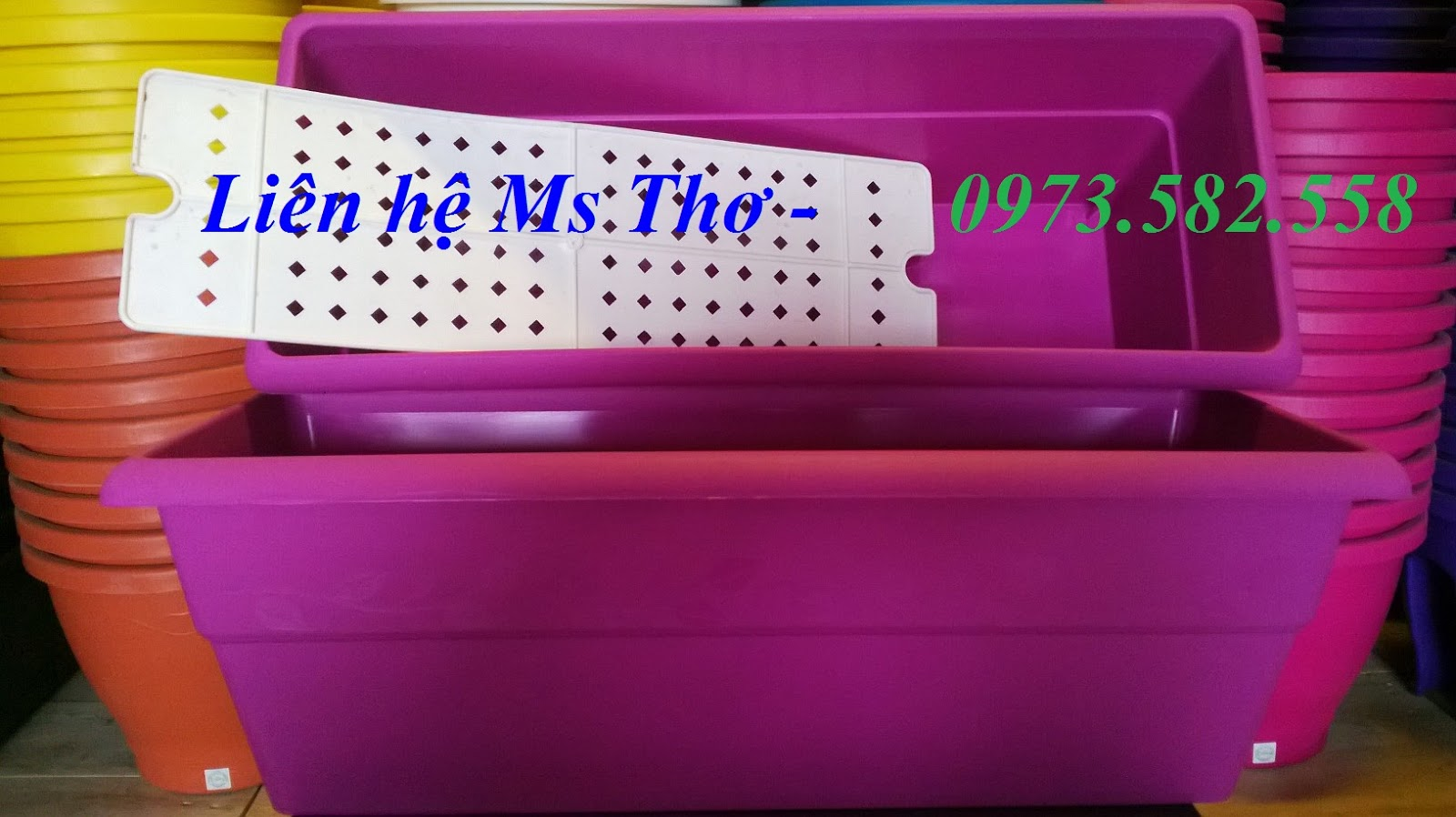 Chậu nhựa chữ nhật dây hoa hồng PM02 giá 80.000đ