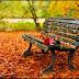 Mùa thu trong hồi ức