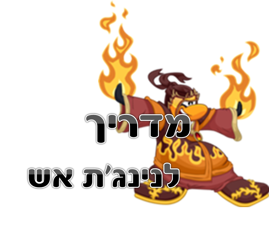מדריך לנינג'ת אש