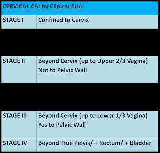 Cervical cancer clinical manifestations mean