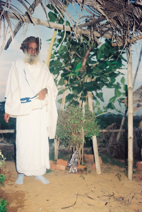Baba AT Gundicha Garden