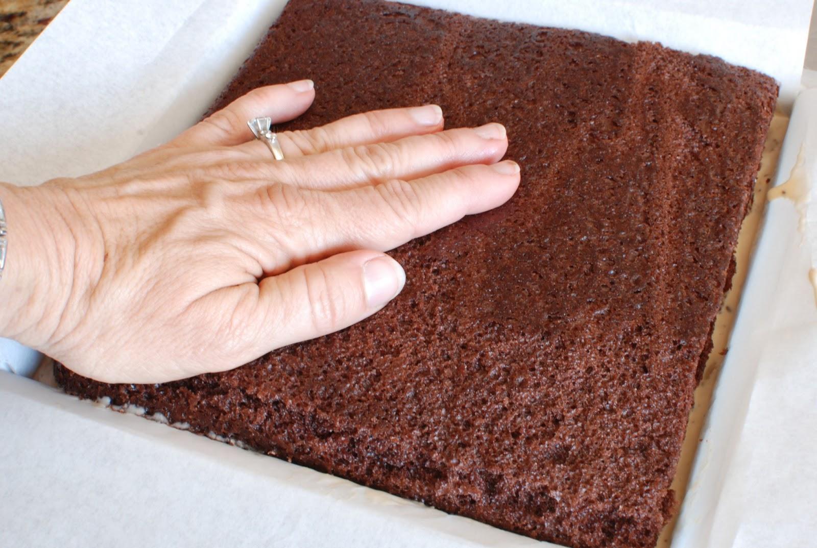 Simply So Good: Chocolate Hazelnut Gelato Cake