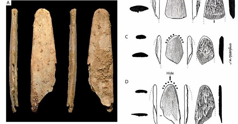 Neanderthals, not modern humans, made first bone tools