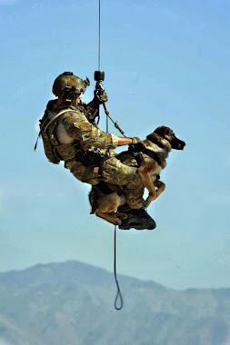 A Soldier and his bomb dog dropping into Afghanistan.