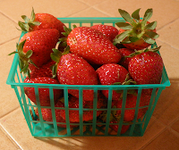 Basket of November Strawberries