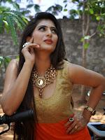 Neha Saxena Sizzling Photo shoot gallery-cover-photo