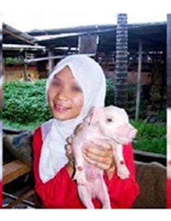 Heboh!... Wanita Berhijab Pegang dan Peluk Babi