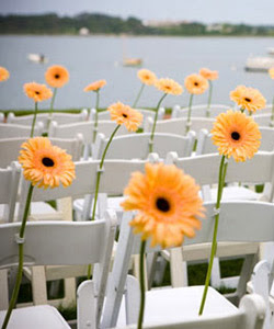 Modern flower chair decor.