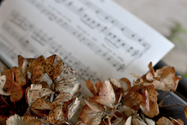 music sheet in typewriter paper feed with spent hydrangeas