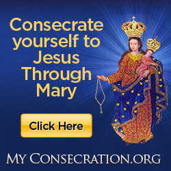 Order your free consecration materials to make the St. Louis de Montfort Consecration to Jesus through Mary