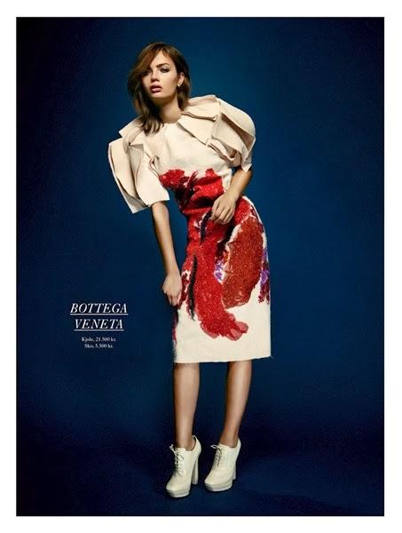 Bottega Veneta 2013 AW Dress