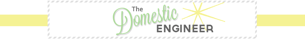 The Domestic Engineer