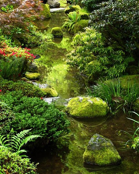 Seattle Urban Landscape Portland Japanese Garden