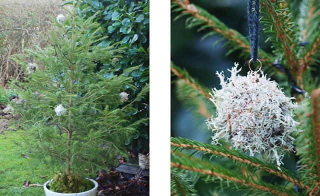 Lav julepynt af naturen materialer