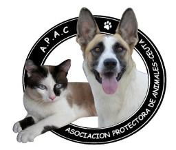 Protectora de Animales Ceuta