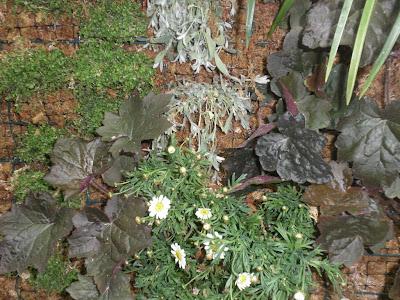 cursos jardineria vertical