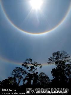 Lima Penampakan Aneh di Amazon Peru
