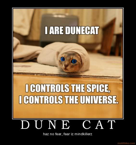 [Image: Dune_cat.jpg]