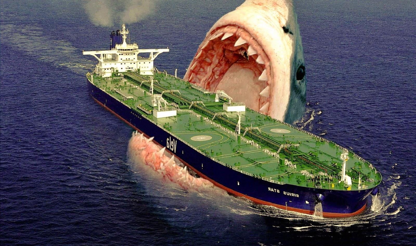 curiosidades sobre o maior tubarão existente megalodon