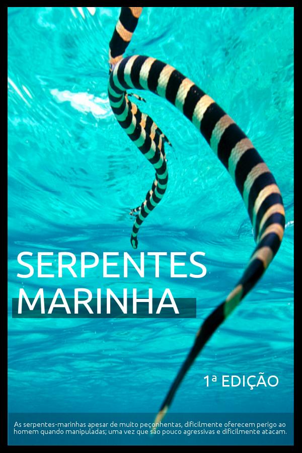 E BOOK  Serpentes  Marinha   1ª  Edição