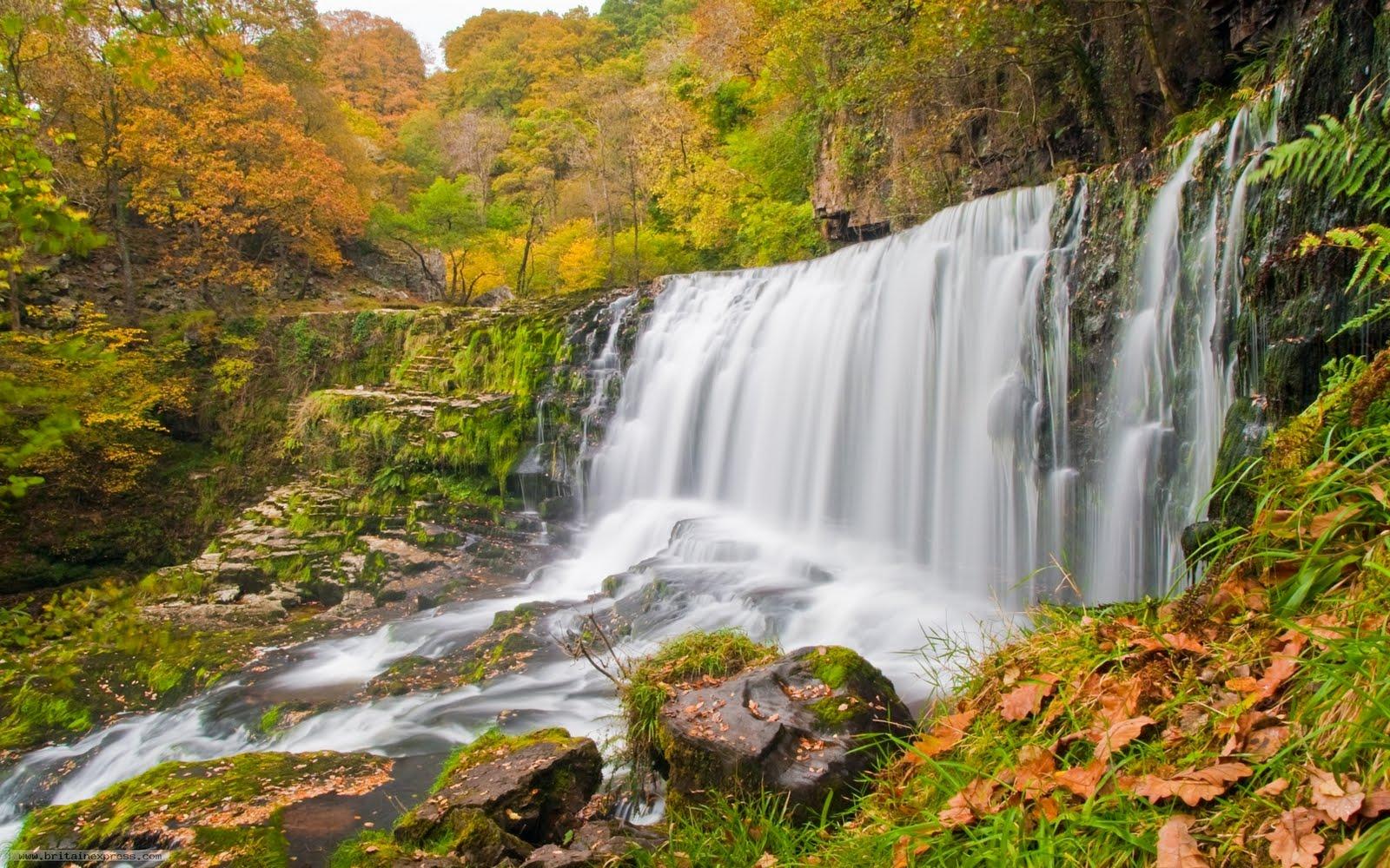 Cascada de agua clara - Waterfalls (1920x1200px)