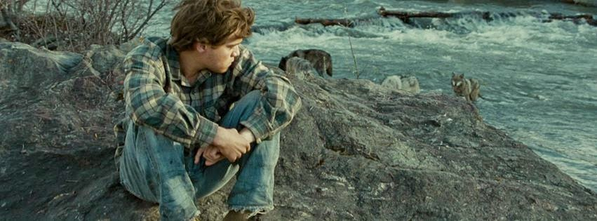 into the wild book vs movie essays In the middle of wild, book and movie, cheryl strayed meets a reporter on the road before wild, into solo journeys into the back country.