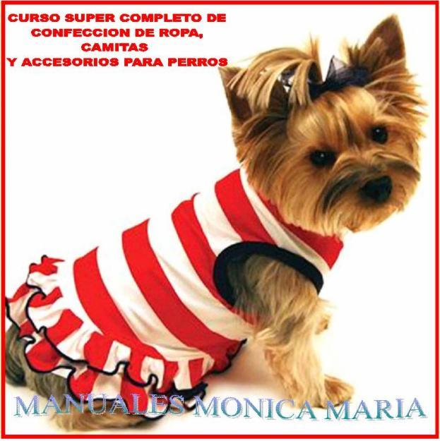 Mascotas en tu hogar accesorios para tus mascotas for Accesorios para mascotas
