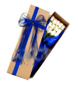 bunga box