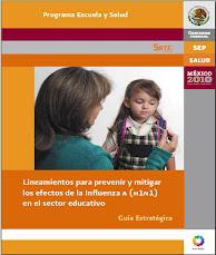 LINEAMIENTOS  PARA PREVENIR Y MITIGAR LOS EFECTOS DE LA INFLUENZA H1N1 EN EL SECTOR EDUCATIVO