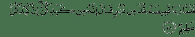Surat Yusuf Ayat 28