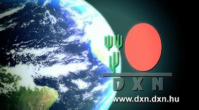 Dxn_lehetoseg