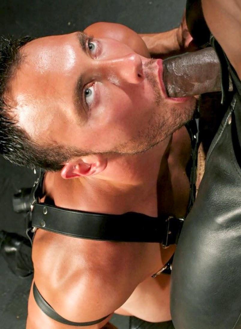 http://www.imagebam.com/gallery/5946okdid1sfvrdadjh3kmll3hgaeybj