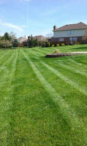 J J Landscaping Llc : Lawn care