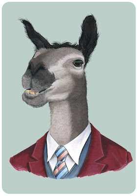 Berkley Illustration's lama